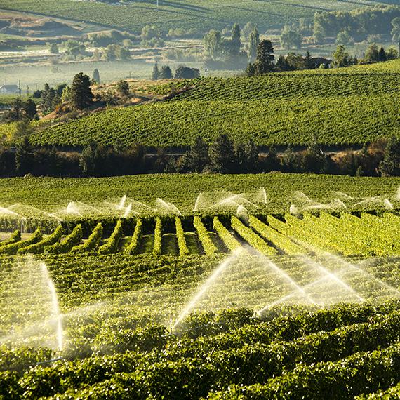 Irrigation & Alimentation des équipements agricoles