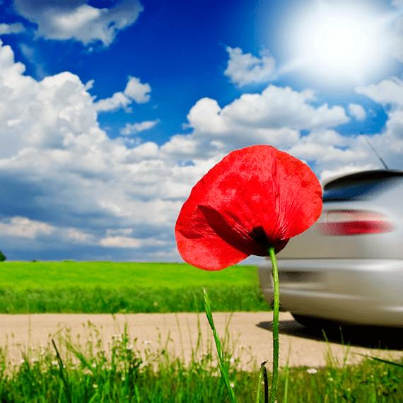 Tests d'émissions en conditions réelles de circulation