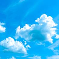 Qualité de l'air : un collectif d'associations environnementales & de médecins adresse une série de propositions au Gouvernement
